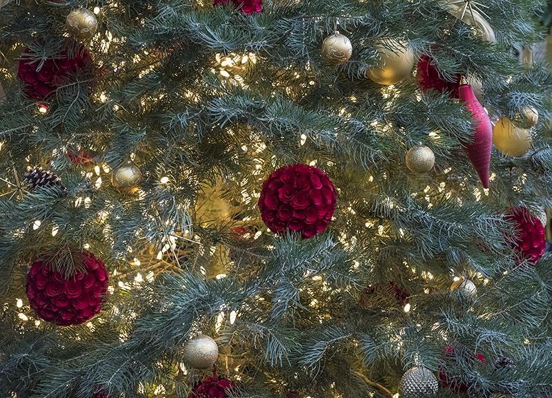 Rosy tree