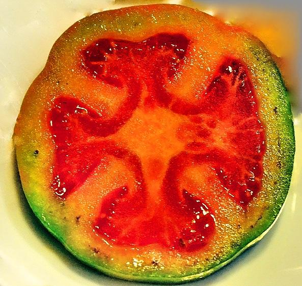 IN HOC SIGNO VINCIS - Cross Of Christ Tomato