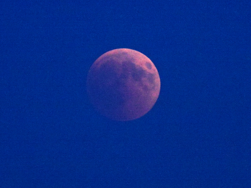 The eclipsed moon is above the horizon - but the sky is not yet dark. Its just after sunset.