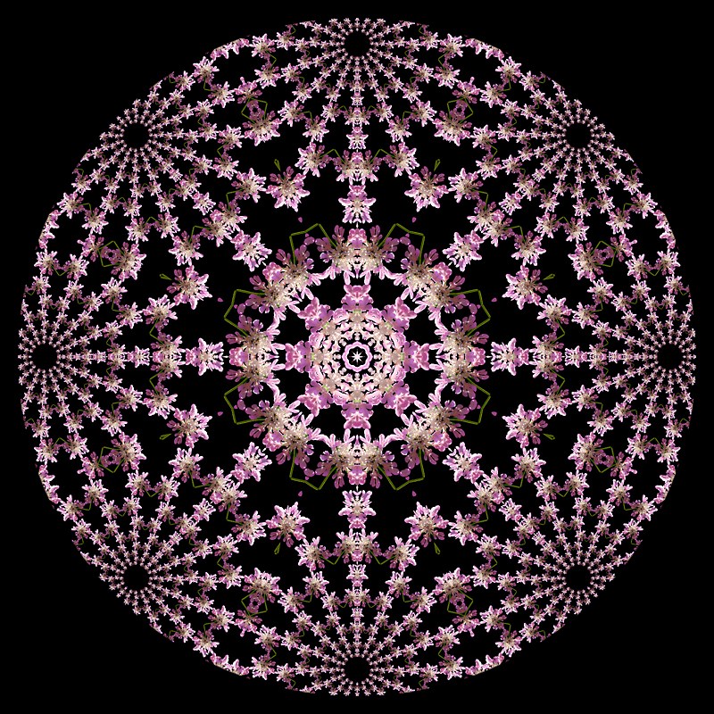 This shows the details of the center part or the previous kaleidoscope
