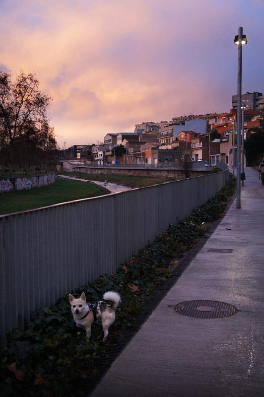En el margen del rio