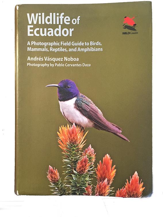 Wildlife-of-Ecuador.jpg