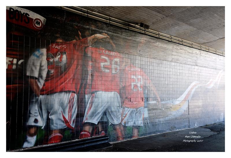 Lisboa Meu Amor - Benfica 6