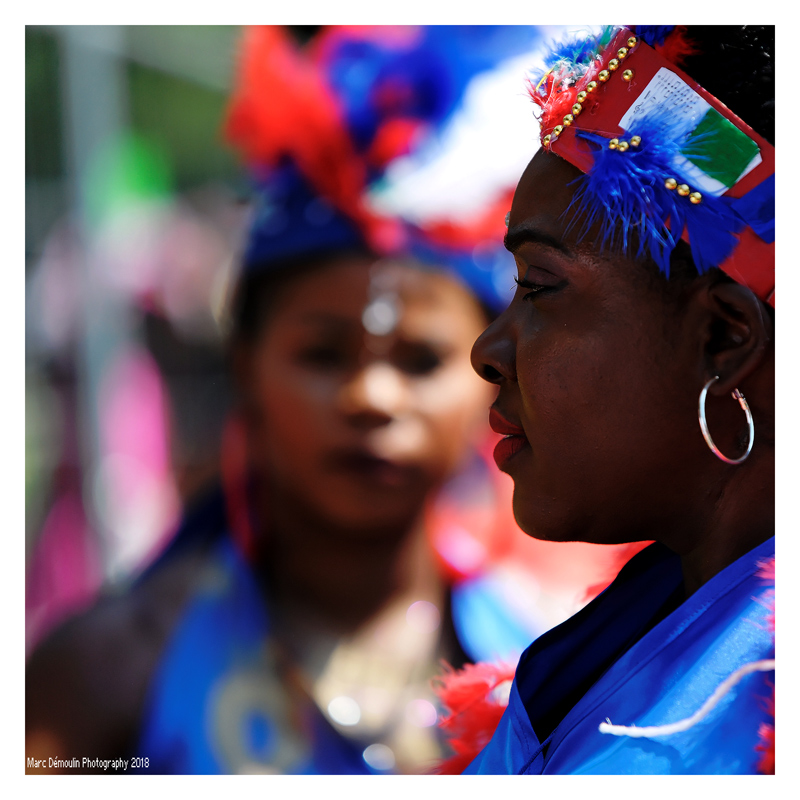 Carnaval Tropical 4