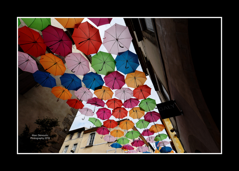 Umbrella street 1