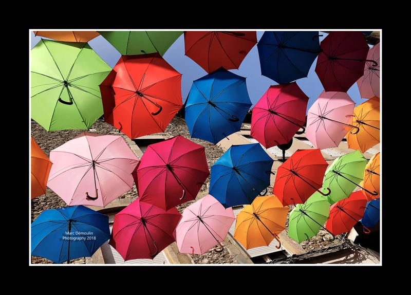 Umbrella street 17