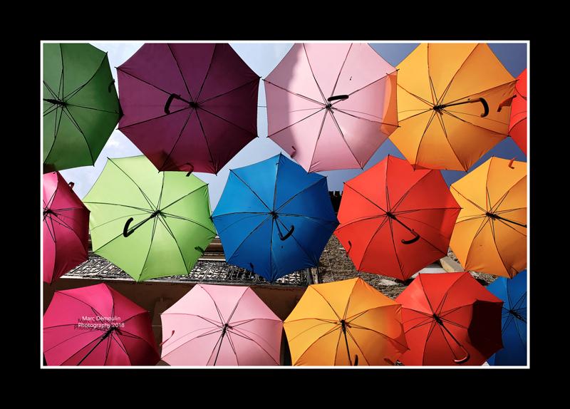Umbrella street 18