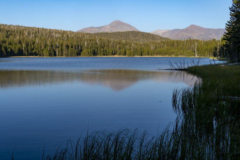 Mount Dana at Dog Lake