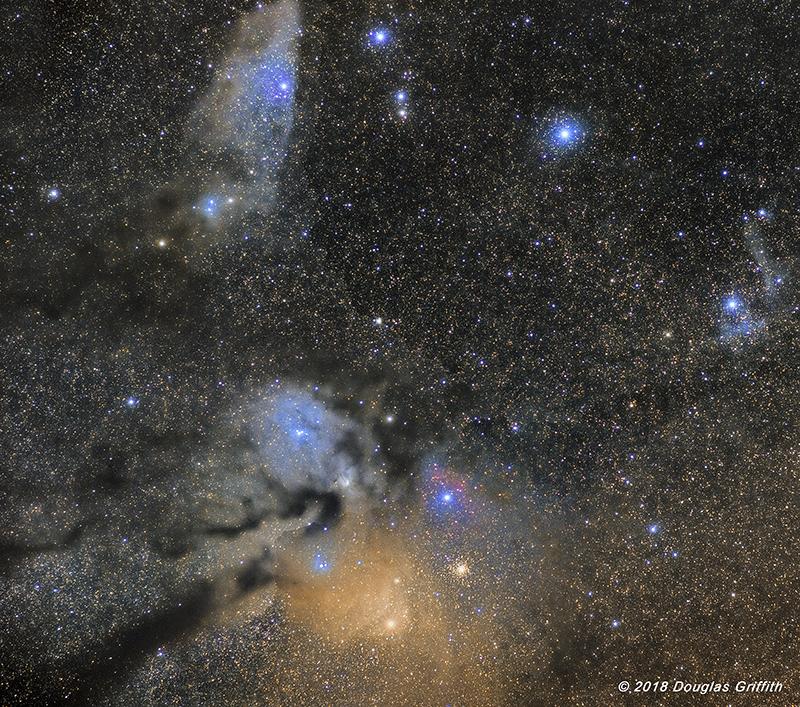 Latest Rho Ophiuchi Molecular Cloud Complex with The Blue Horsehead Nebula (IC 4592)