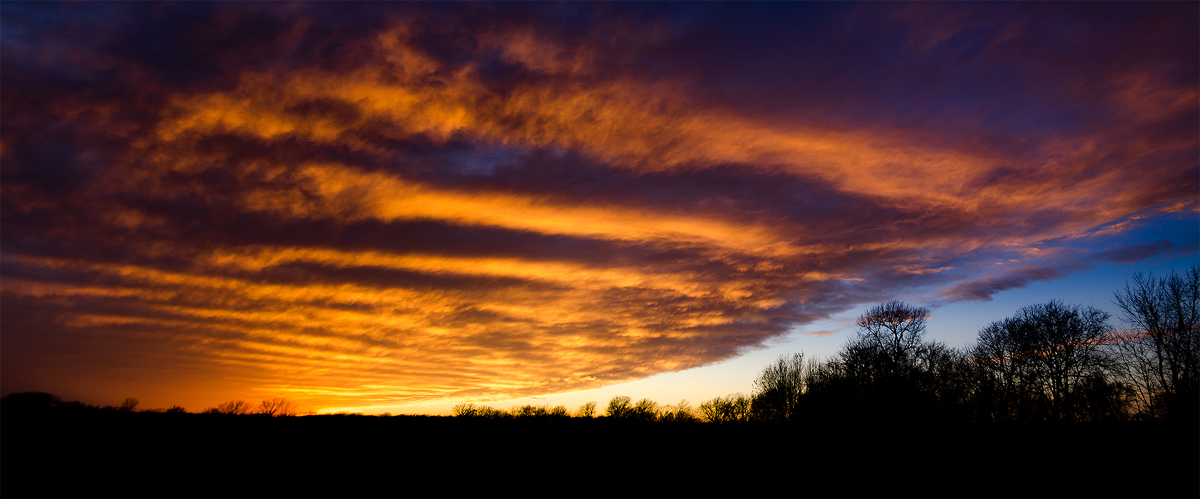 Sunset Detail