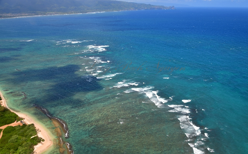 Beach by Kahului airport, Maui, Hawaii 302