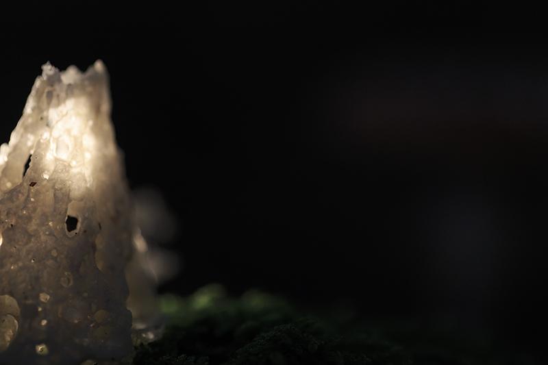 2N9B1356 lampje