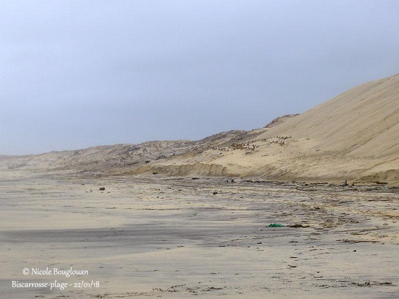 402- Biscarrosse-plage
