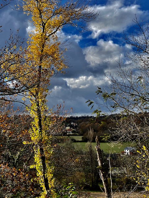 Sur un ciel d'automne