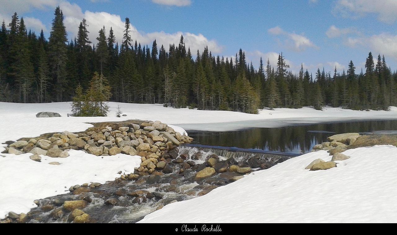 Petit lac à l'épaule / Réserve faunique des Laurentides 170715788.Puv0euKC.Petitlaclpaule