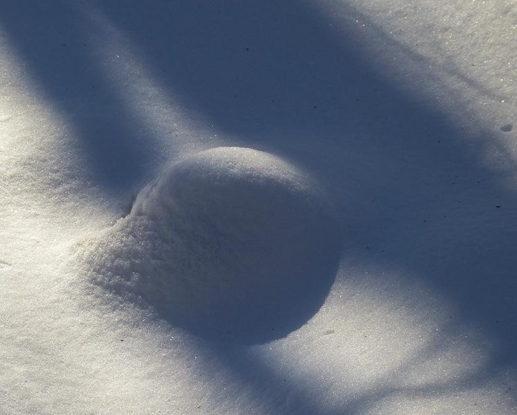 snow ball 260
