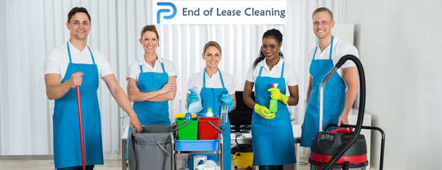 Peters Premier Cleaning