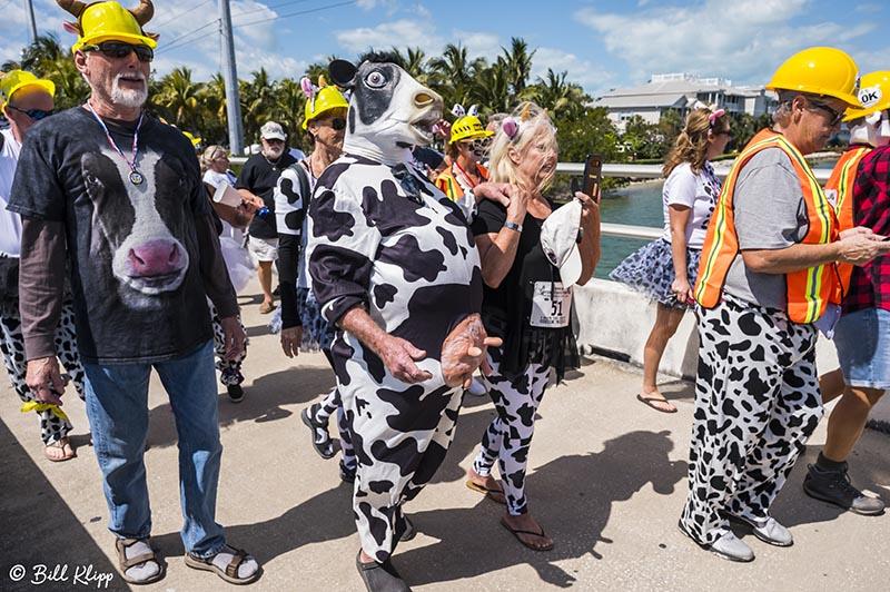 Cow Key Channel Bridge Run  33