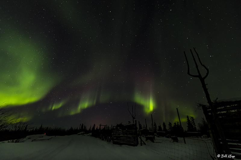 Aurora Borealis  37