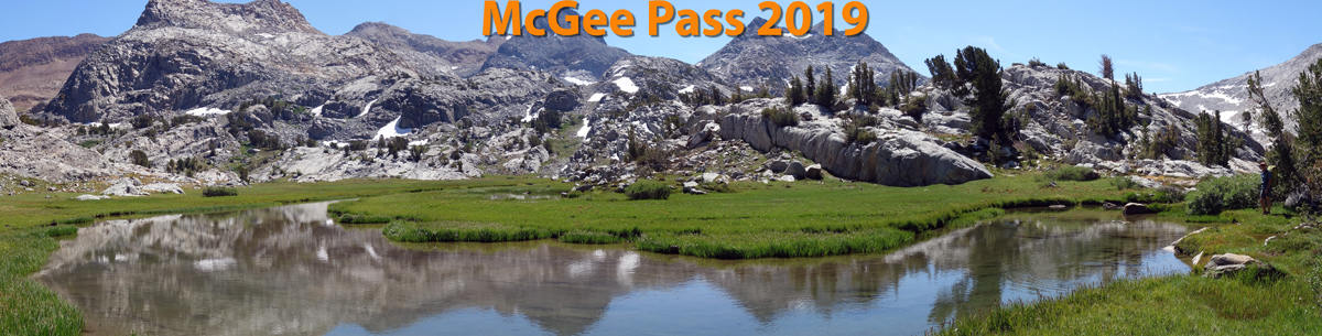 Meadows west of McGee Pass