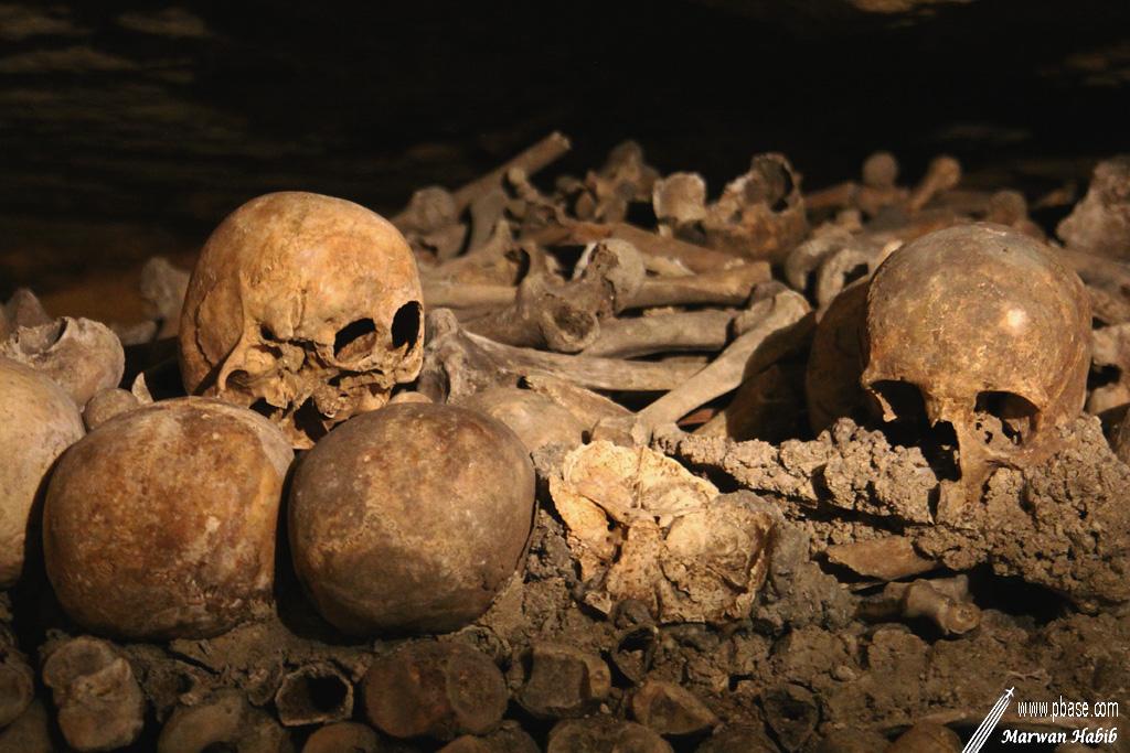 06-02-2020 : It could be your ancestor / Cela pourrait être votre ancêtre