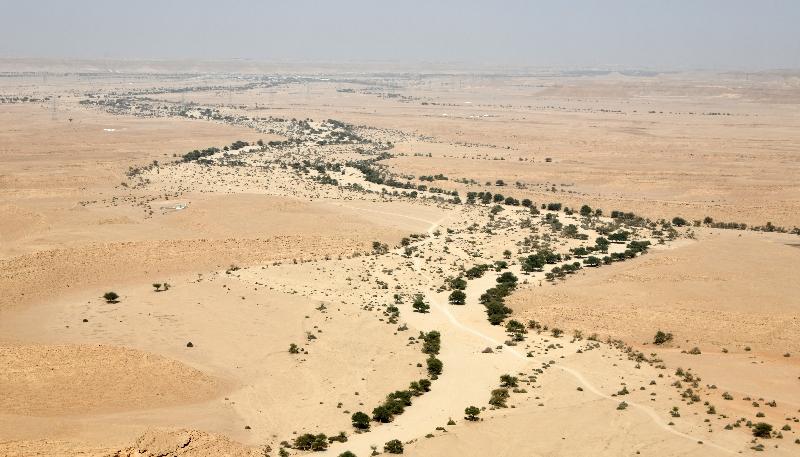 Life in Wadi in the Tuwayq Mountain, Al Amaaria, Riyadh Region, Saudi Arabia 955