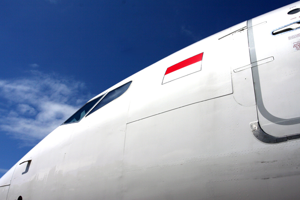 GARUDA INDONESIA BOEING 737 800 RF IMG_1871.jpg