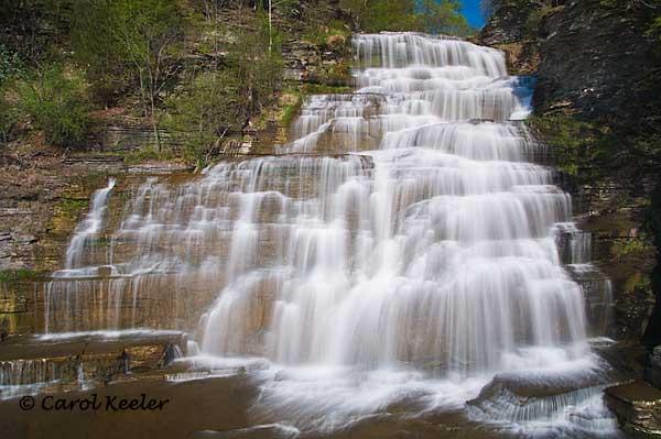 Spring at Hector Falls