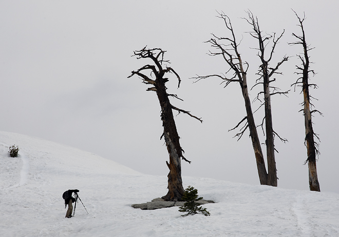 Photographer On Sentinel Dome