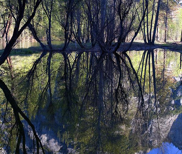 Reflecting On Yosemite
