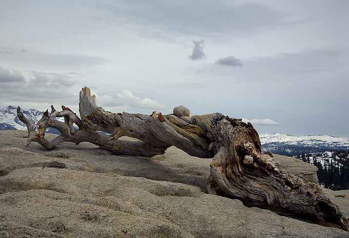 Left On Sentinel Dome
