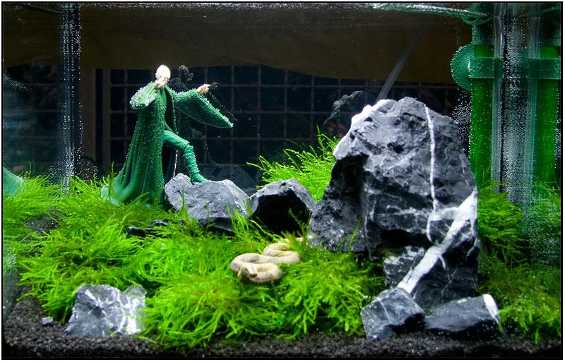 Tetra AquaArt 20 Liter Shrimps