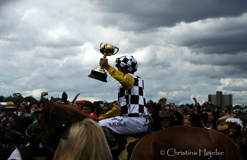 6277i.jpg (The 150th Melbourne Cup)