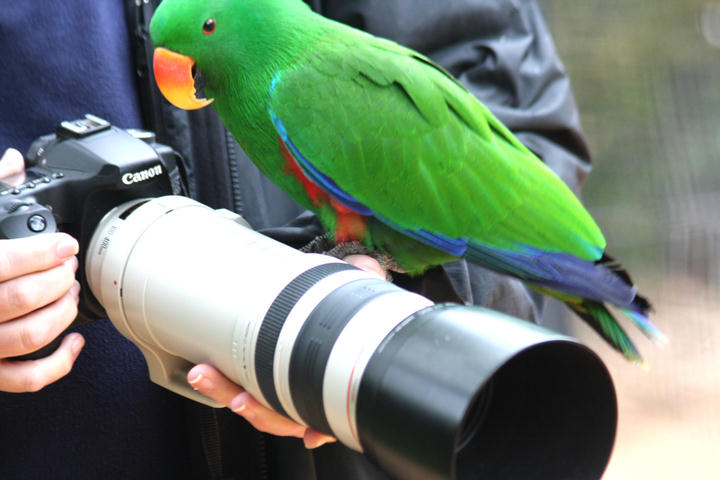 John and friend 2: interested in the lens
