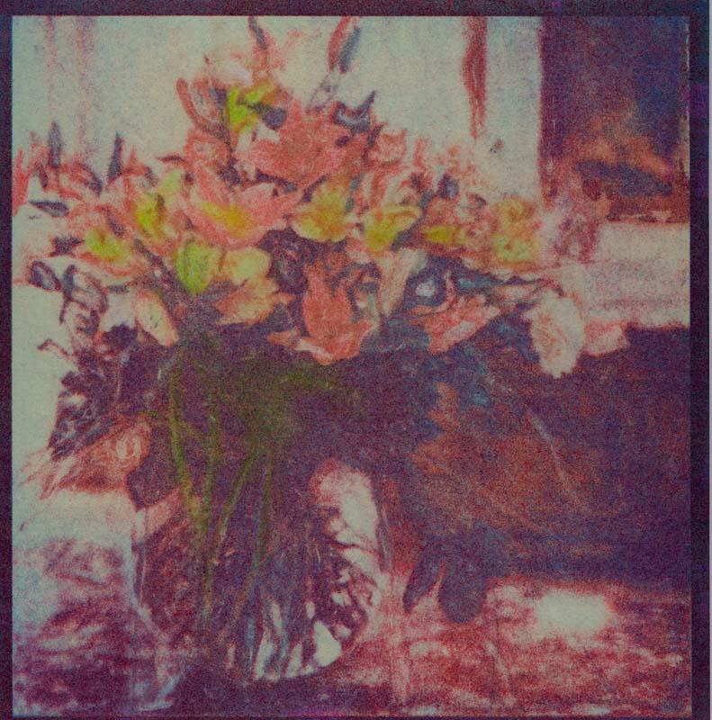 Govenors Flowers  (Tri-color gum)
