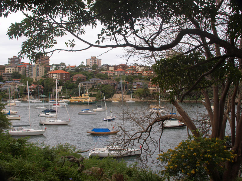 Leafy view of Mosman Bay