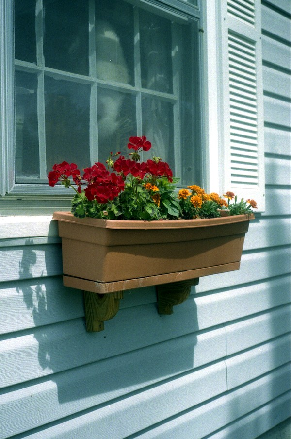 397_window_planter.JPG