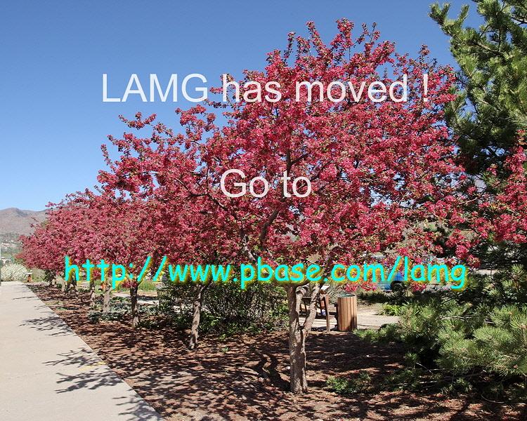 <a href=http://www.pbase.com/lamg>Los Alamos Master Gardeners</a>