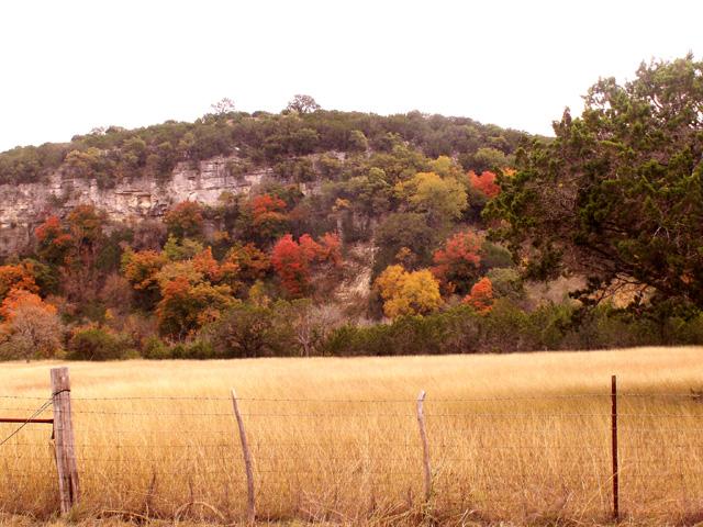 11-3-08Z6 Texas Hillcountry 10.jpg