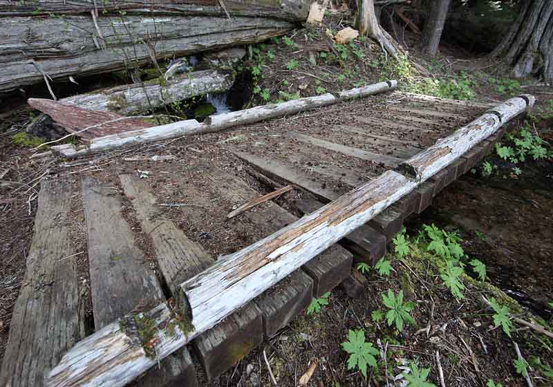 Rotted bridge plank on Packwood Lake trial