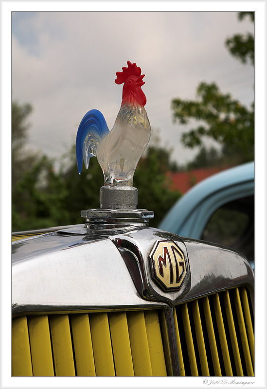 French MG ;-)