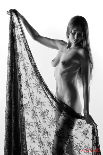 Black Lace Series - Into The Light