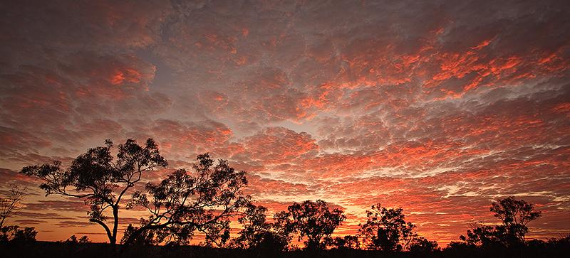 Outback Kimberley Sunrise