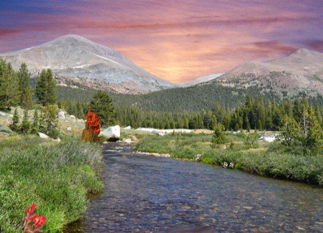 Dana Meadows with Color and Sunrise - Nikon D3100 (PS).jpg