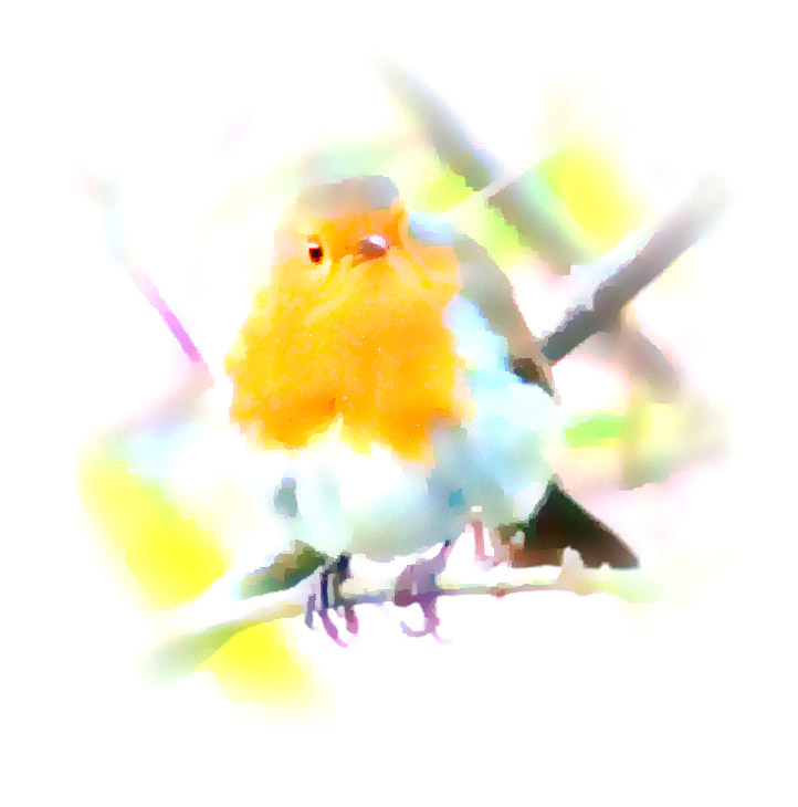 Robin impression, Stonehouse, Gloucs.