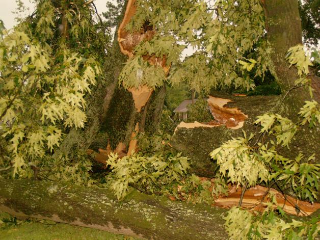 House - 6-12-09 storm damage