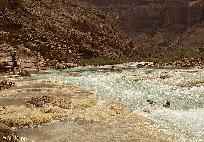 Body surfing the Little Colorado River  1