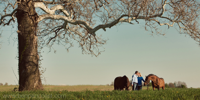 Engagement picture of a couple with their horses.