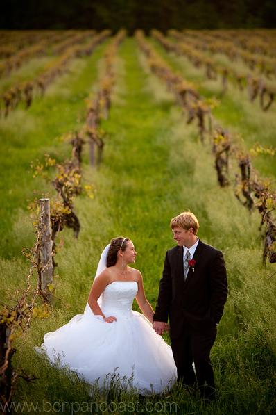 Wedding photos at a vineyard in Michigan.