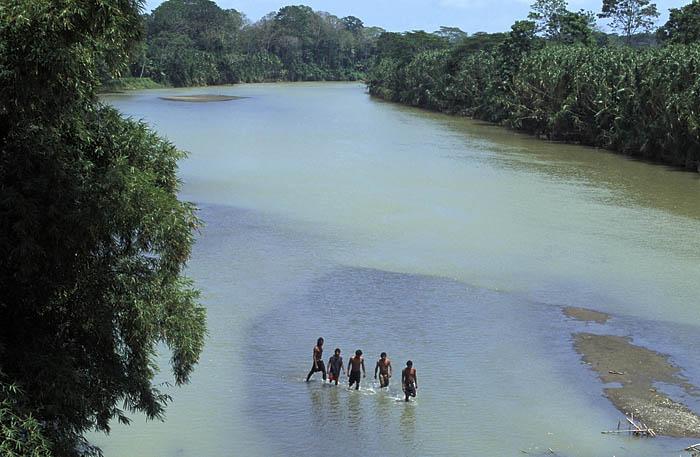 Rio Banano